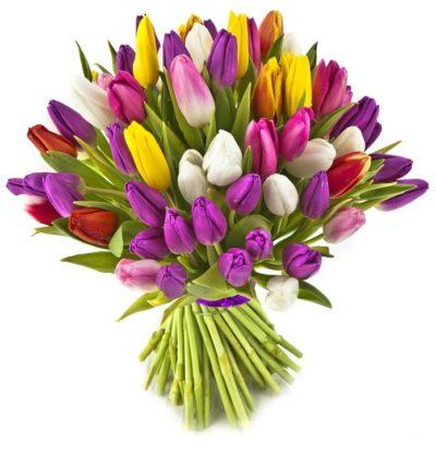 משלוחי פרחים באשדוד וחנות פרחים באשדוד